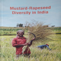 Musturd-Rapeseed Diversity in india