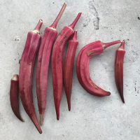 Okra Red
